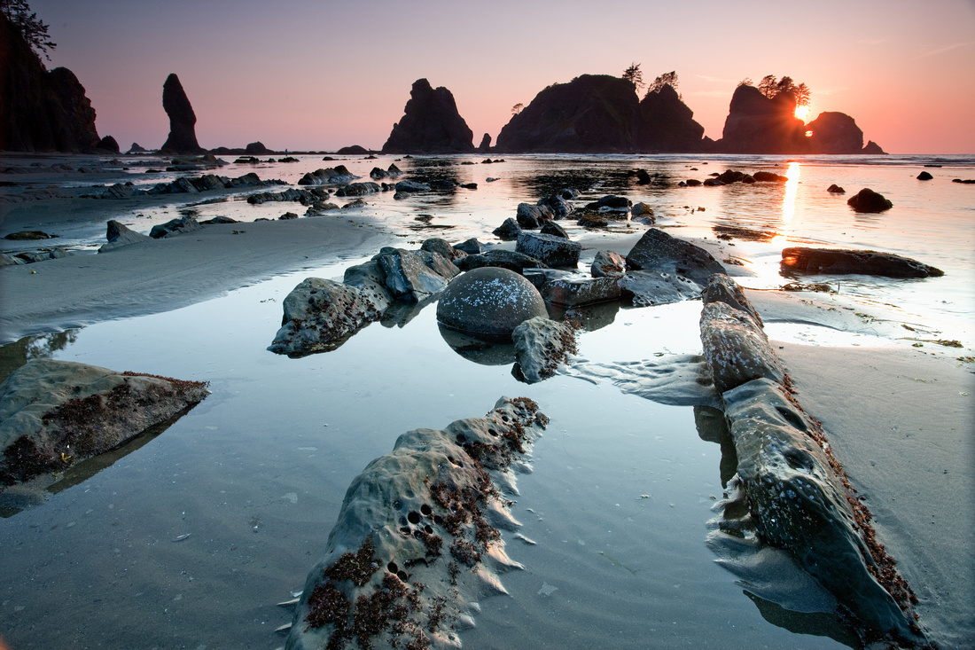 Olympic Coast - Point of the Arches